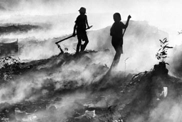 Campanha da OIT promove segurança ocupacional e combate ao trabalho infantil