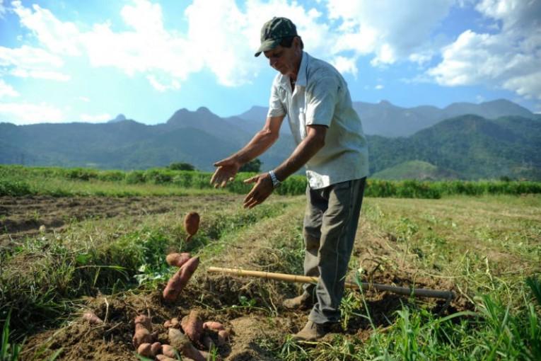 Trabalhador rural: informalidade, poucos anos de estudo e envelhecimento precoce, o que requer mais cuidados. Fotografia: Agência Brasil