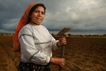 Por que as mulheres da América Latina param?