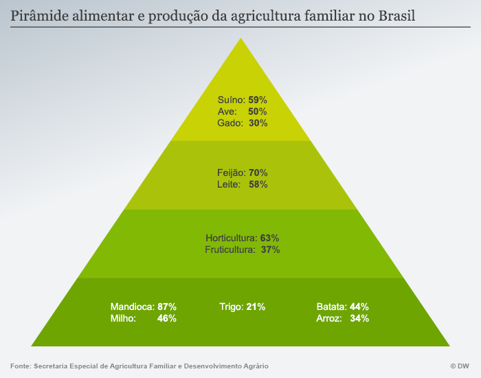 dw_grafico_piramide-alimentar