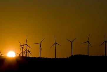 OIT prevê que 24 milhões de empregos serão criados na economia verde no mundo até 2030