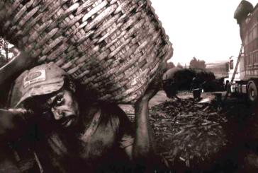 Lei Áurea, 130: A abolição incompleta continua gerando pessoas descartáveis