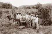 Nenhum negro foi indenizado pela escravidão no Brasil. Esse debate é mais urgente do que nunca