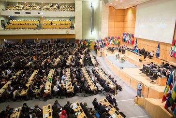 """Brasil é reincluído na """"lista suja"""" da Organização Internacional do Trabalho"""