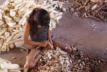 2021 será o Ano Internacional para a Erradicação do Trabalho Infantil?