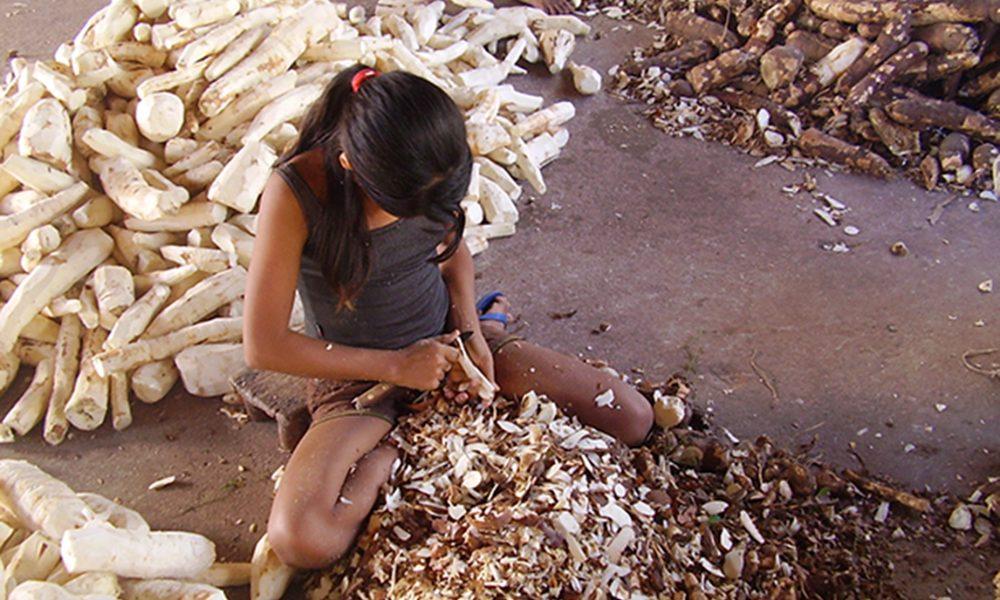 Especialista da OIT diz que Brasil precisa garantir políticas de educação para eliminar trabalho infantil