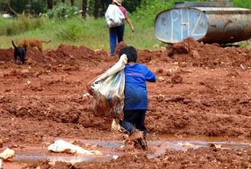 Trabalho infantil: a importância de sua erradicação para a efetividade constitucional