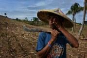 Aquecimento global deve afetar mais de 80 milhões de empregos até 2030, diz OIT