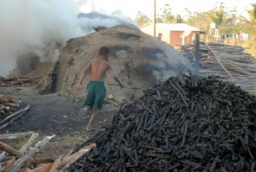 Trabalho infantil prejudica desenvolvimento, reduz renda e está ligado à escravidão: 'Não é vender brigadeiro'